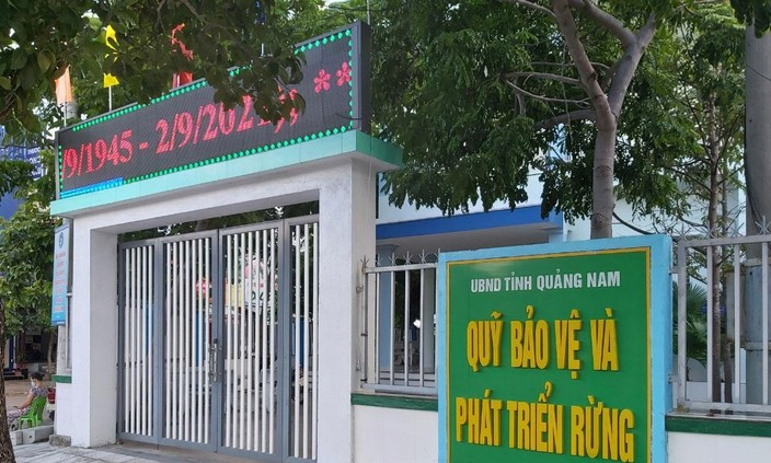 Gói thầu bị kiến nghị do Quỹ Bảo vệ và Phát triển rừng tỉnh Quảng Nam làm chủ đầu tư, Công ty CP Tư vấn Toàn Thành làm bên mời thầu. Ảnh: Quốc Học
