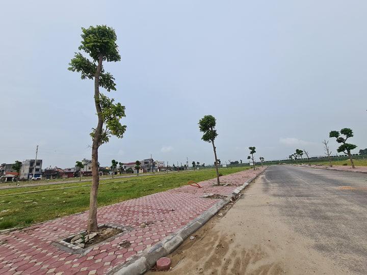 6 dự án đô thị tại Bắc Ninh: Có dấu hiệu không tuân thủ pháp luật đấu giá