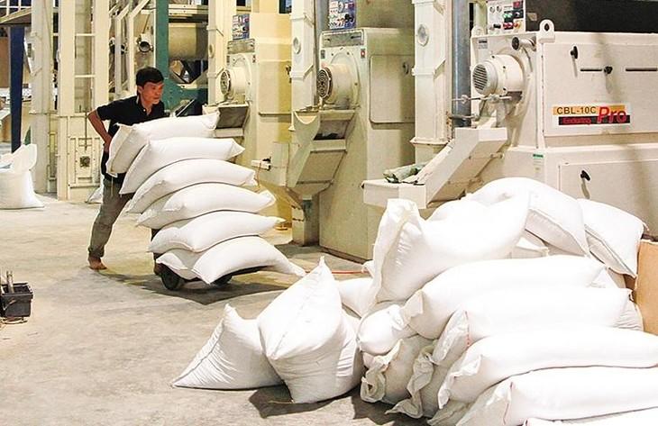 Đấu giá dây chuyền sản xuất lúa gạo tại Tiền Giang