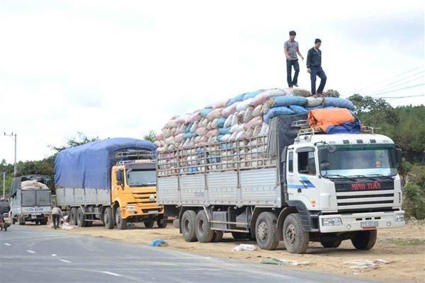 6 tháng đầu năm 2020 có 5.881 xe vi phạm trọng tải xe