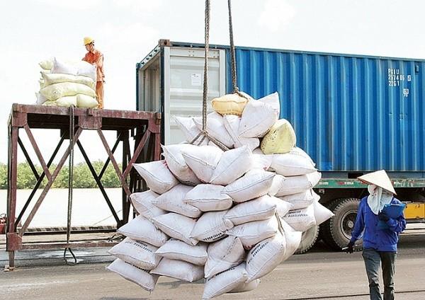 Dự án Cung cấp gạo nhập kho dự trữ quốc gia tại khu vực Hà Nội năm 2020 có tổng dự toán 101,22 tỷ đồng.