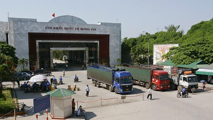 Trung Quốc là thị trường lớn nhất nhập khẩu các loại rau và quả của Việt Nam, chiếm 70,4% tổng kim ngạch xuất khẩu. Ảnh: Tường Lâm