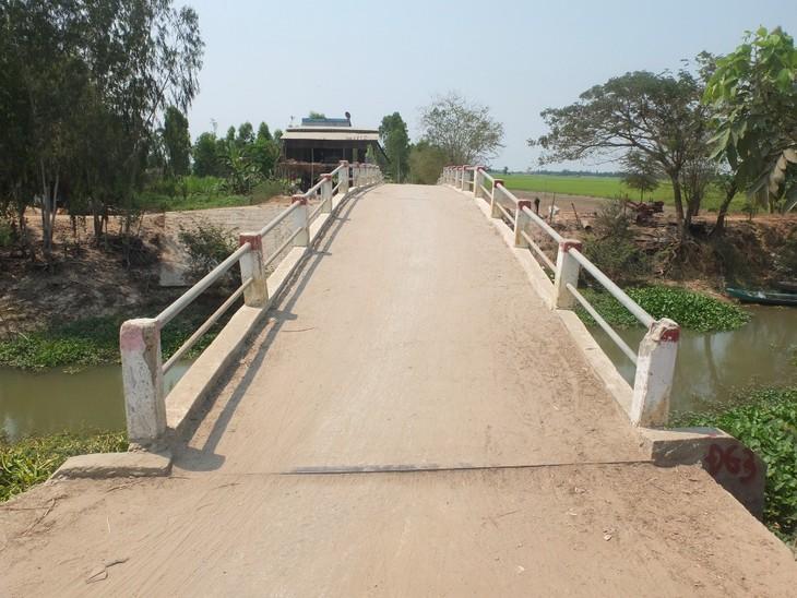 Đấu giá quyền sử dụng đất huyện Tân Hồng, Đồng Tháp