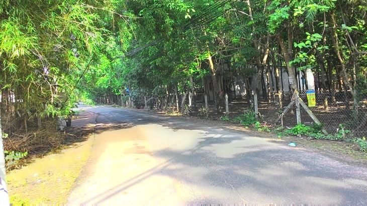 Đấu giá quyền sử dụng đất tại huyện Củ Chi, TPHCM