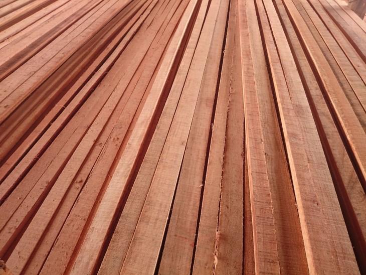 Đấu giá gỗ xẻ từ nhóm II đến nhóm IV tại tỉnh Kon Tum