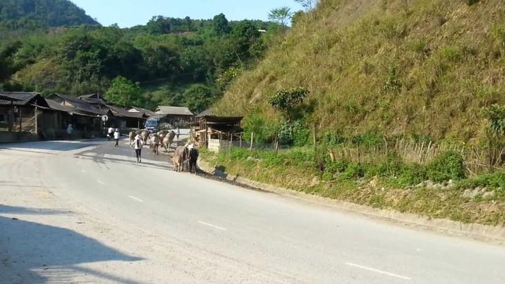 Đấu giá quyền sử dụng đất sản xuất kinh doanh tại huyện Kỳ Sơn, Nghệ An