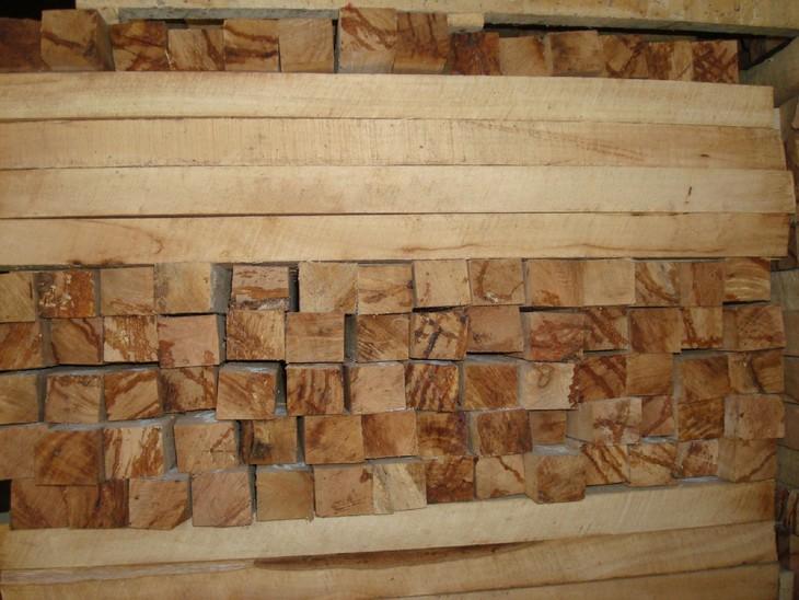 Đấu giá gỗ xẻ nhóm III tại tỉnh Kon Tum