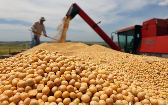 Kim ngạch xuất khẩu nông lâm thuỷ sản liên tục tăng thời gian qua.
