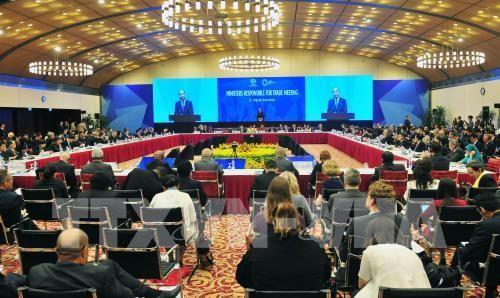 APEC 2017: Tuyên bố Bộ trưởng về Hiệp định Đối tác xuyên Thái Bình Dương. Ảnh: TTXVN