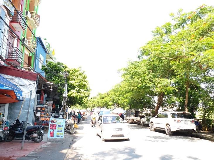 Chỉnh trang hai bên sông Tam Bạc góp phần vào quá trình thay đổi diện mạo đô thị, đưa Hải Phòng phát triển theo hướng đô thị xanh, bền vững.