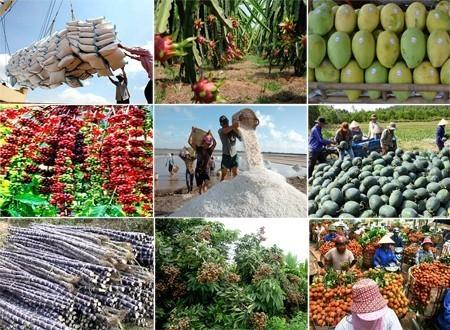 Xuất khẩu nông sản vẫn giữ được tăng trưởng trong 8 tháng đầu năm 2017.
