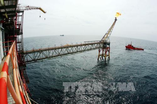 Khai thác dầu khí tại giàn CNTT-3 mỏ Bạch Hổ. Ảnh: TTXVN