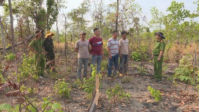 Các đối tượng phá rừng làm nương rẫy tại huyện Ea Súp