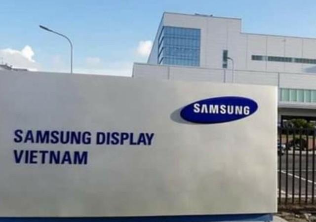 Công ty TNHH Samsung Display - nơi bệnh nhân 262 làm việc