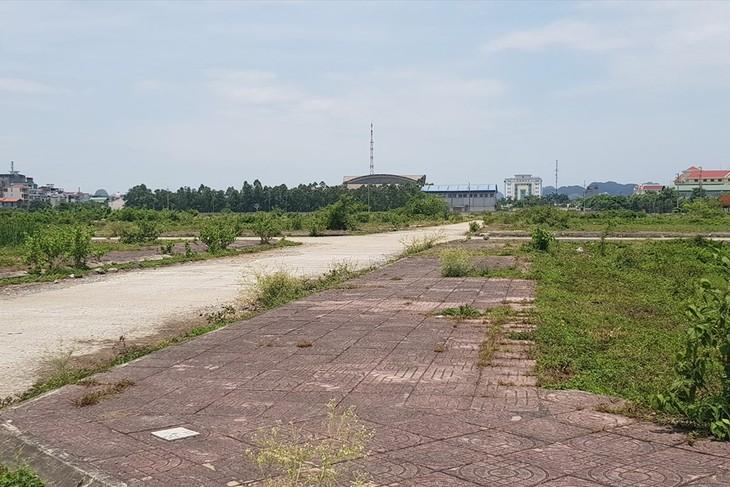 """Khu """"đất vàng"""" rộng 28ha nằm giữ lòng thành phố Ninh Bình và đã được đầu tư xây dựng hạ tầng nhưng vẫn nằm bỏ hoang hơn 10 năm nay."""