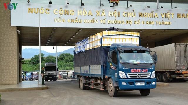 Quả vải tươi thông quan qua cửa khẩu Kim Thành (Lào Cai).