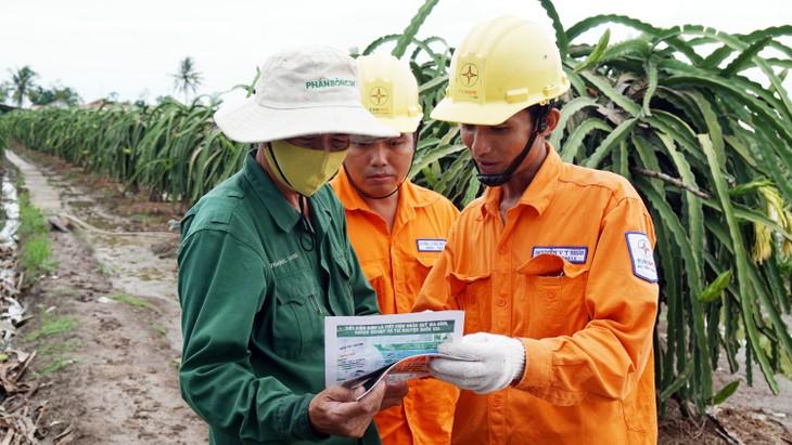 Hướng dẫn người dân trồng thanh long tại huyện Chợ Gạo, tỉnh Tiền Giang sử dụng điện an toàn để chông đèn thanh long
