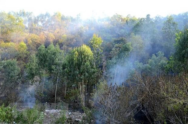 Hiện trường vụ cháy tại núi Hầm Vàng. Ảnh: TTXVN