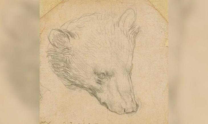 "Bức họa ""Đầu gấu"" của Leonardo Da Vinci. Ảnh: The Epoch Times"