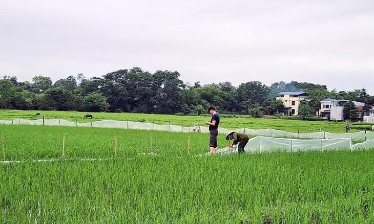 """Bộ TN-MT yêu cầu Thái Nguyên báo cáo việc đất chưa """"sạch"""" đã bán đấu giá"""