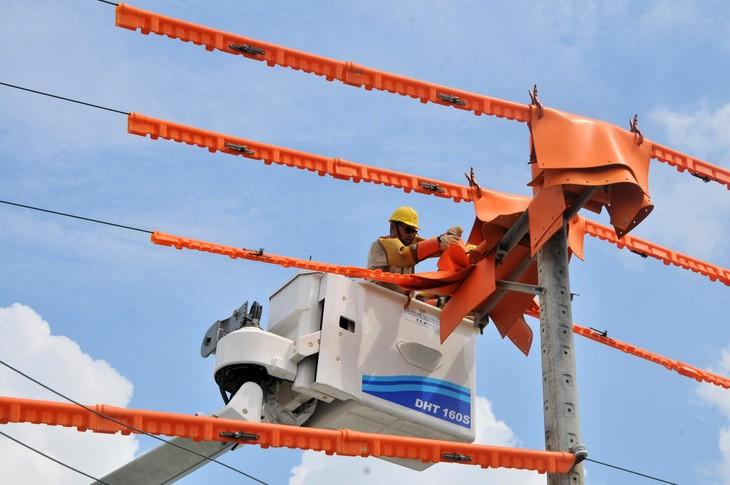 EVNSPC bảo đảm cấp điện phục vụ kỳ thi tốt nghiệp và tuyển sinh năm 2021