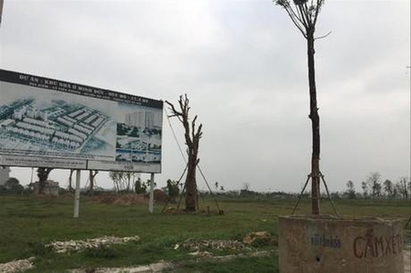 Một dự án nằm im lìm chục năm tại huyện Mê Linh. Ảnh minh họa