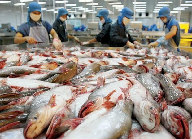 Doanh nghiệp chế biến, bảo quản thủy sản và các sản phẩm từ thủy sản là một trong những đối tượng được hỗ trợ giảm tiền điện đợt này. Ảnh: Tường Lâm