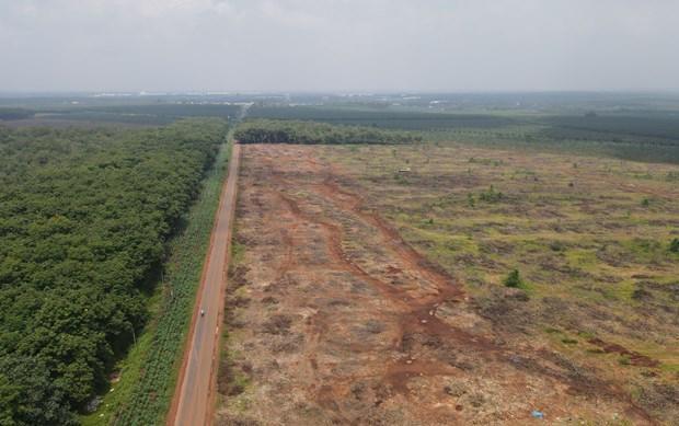 Dự án sân bay Long Thành: Chưa thể chi trả tiền bồi thường vì COVID-19