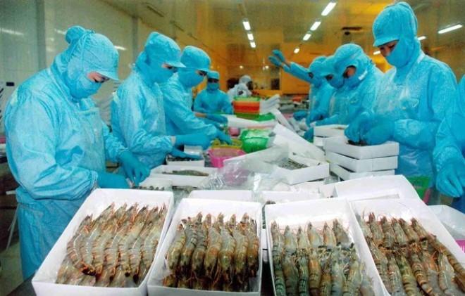 Việt Nam và Nga thống nhất đẩy nhanh EEUVFTA