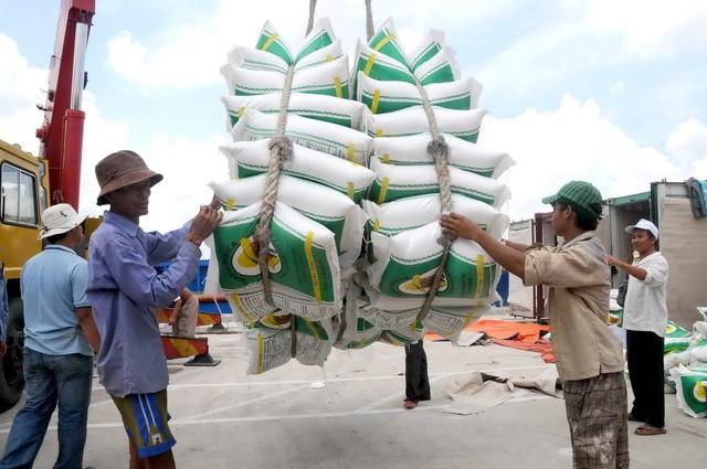 Xuất khẩu gạo đang giảm mạnh cả lượng và giá (ảnh minh hoạ)
