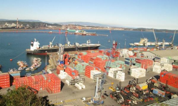 Quá trình cổ phần hóa Cảng Quy Nhơn từ năm 2010 đến nay sẽ được Thanh tra Chính phủ xem xét.