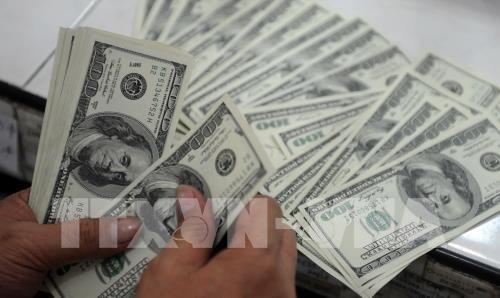 Tỷ giá USD hôm nay 13/6. Ảnh: AFP/TTXVN