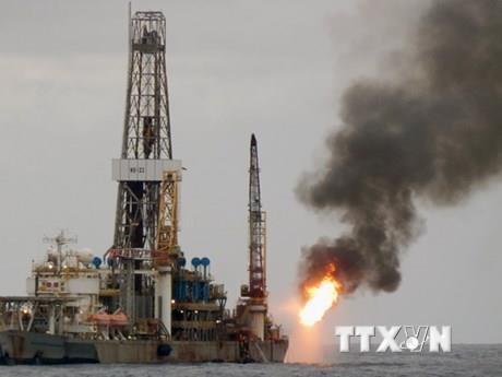 Giá dầu châu Á ngày 28/11 tăng hơn 1%. Ảnh minh họa: TTXVN