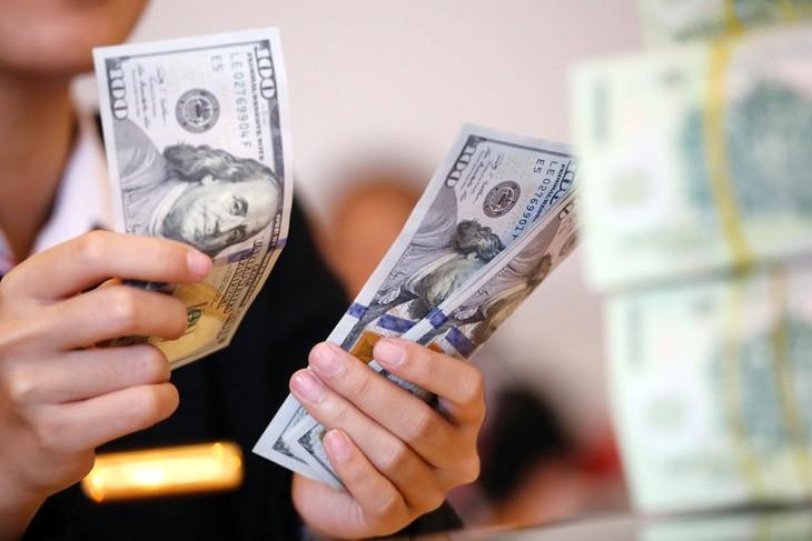 Lũy kế từ đầu năm đến ngày 17/4/2019, Ngân hàng Nhà nước đã mua được 8,35 tỷ USD bổ sung dự trữ ngoại hối. Ảnh: Minh Dũng
