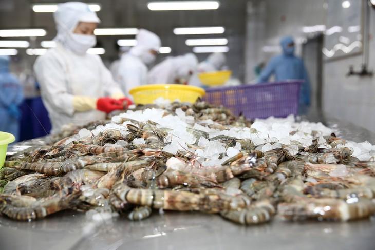 Đến năm 2030, công nghiệp chế biến nông lâm thủy sản Việt Nam đặt mục tiêu đứng trong số 10 nước hàng đầu thế giới. Ảnh: Lê Tiên