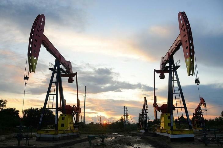 Một cơ sở khai thác dầu tại Hắc Long Giang (Trung Quốc). Ảnh:Reuters