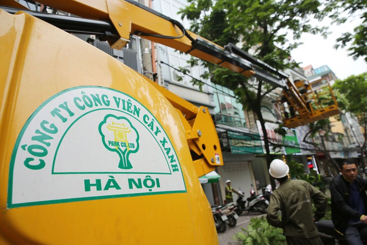 Công ty TNHH MTV Công viên cây xanh Hà Nội là nhà thầu chính thực hiện công tác quản lý, duy tu, cải tạo, trang trí cây xanh cho Thủ đô trong 4 - 5 năm tới. Ảnh: Lê Tiên