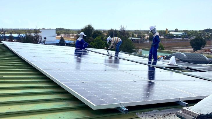 Tổng quy mô đấu giá cạnh tranh để huy động phát triển điện mặt trời trong giai đoạn đến tháng 6/2021 là khoảng 1.000 MW. Ảnh: Trung Thành