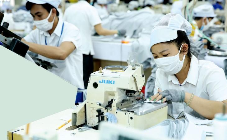 Việt Nam có đủ năng lực để trở thành một quốc gia sản xuất khẩu trang vải lớn trên thế giới. Ảnh: Lê Tiên