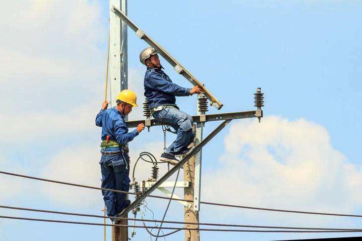 Hai gói thầu xây lắp điện tại Quảng Trị thu hút 15 nhà thầu tham dự. Ảnh: Thế Anh
