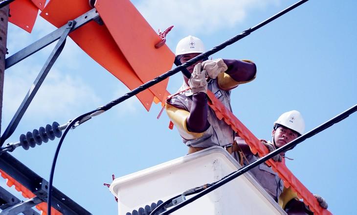 Từ năm 2016 đến nay, Công ty CP Tuấn Ân Hà Nội trúng khoảng 335 gói thầu, đều trong lĩnh vực điện. Ảnh: Thế Anh