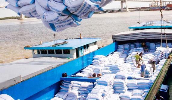 """""""Tân binh"""" lần đầu tham gia các gói thầu gạo dự trữ tại TP.HCM - Công ty TNHH Kim Hằng đã trúng tổng cộng 4 trong số 7 gói thầu. Ảnh: Minh Hoa"""