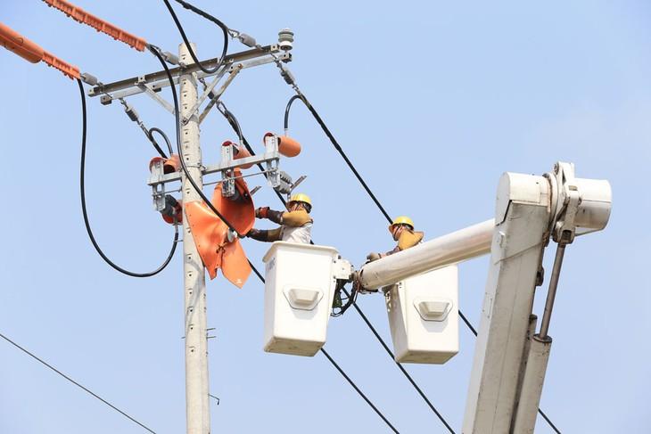 EVNHCMC đã tiến hành kiểm tra hành lang lưới điện, duy tu, bảo dưỡng, sửa chữa kịp thời những hư hỏng