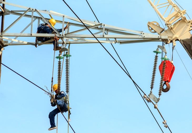 Hơn 4 năm trở lại đây, Công ty Extex liên tiếp được lựa chọn là nhà thầu cung cấp vật tư, thiết bị ngành điện. Ảnh: Thế Anh