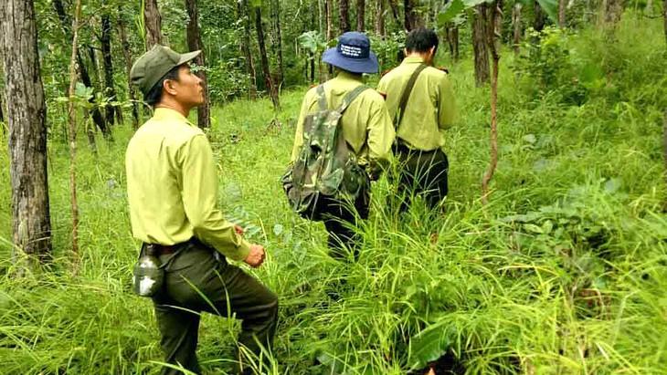 Gói thầu Mua sắm trang phục kiểm lâm phục vụ công tác quản lý và bảo vệ rừng do Khu bảo tồn Thiên nhiên Văn hóa Đồng Nai làm chủ đầu tư. Ảnh: Văn Khương