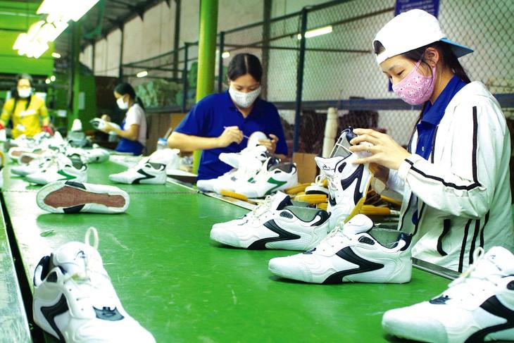 Yêu cầu của các nhà nhập khẩu ngày càng cao hơn, hướng đến kinh tế tuần hoàn và phát triển bền vững. Ảnh: Lê Tiên