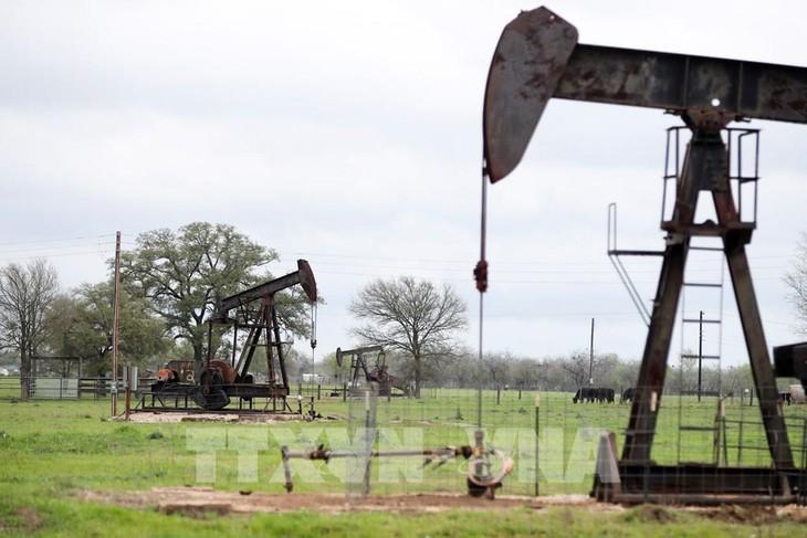 Một trạm bơm dầu ở Luling, bang Texas, Mỹ. Ảnh: THX/TTXVN