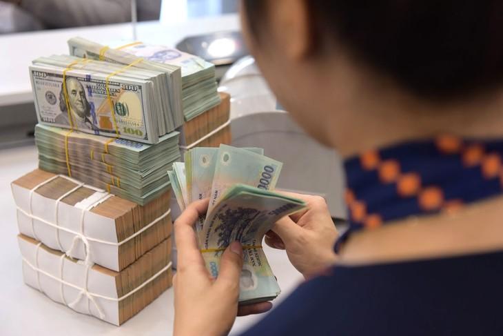 Nhu cầu gia tăng dự trữ ngoại hối là cần thiết trong bối cảnh Việt Nam nhận được nhiều khuyến cáo của các tổ chức tài chính về thiếu hụt dự trữ ngoại hối. Ảnh: Lê Tiên