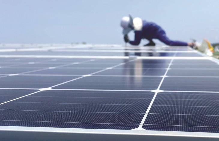 Các dự án điện mặt trời tập trung chủ yếu ở Bình Thuận, Ninh Thuận, những nơi đang bị quá tải công suất. Ảnh: Trung Thành