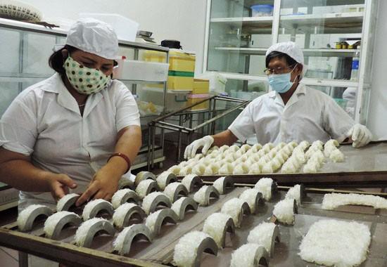 Dự án Quản lý, khai thác yến sào tỉnh Bình Định giai đoạn 2021 - 2030 đầu tư theo hình thức PPP áp dụng loại hợp đồng kinh doanh - quản lý. Ảnh minh họa: Thu Hiền